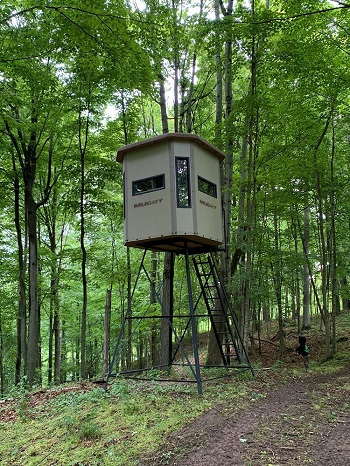 muddy box stand in woods